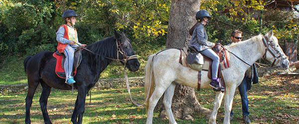 ippasia pelion horse riding